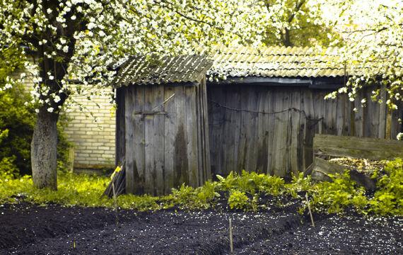 Mag je een tuinhuis of bijgebouw plaatsen zonder vergunning?