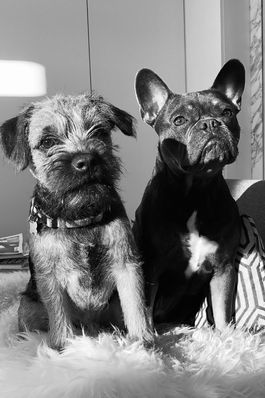 Freddie & Leo